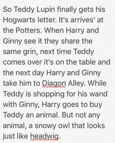 Teddy Lupin gets his Hogwarts letter-Fan fiction by Paityn