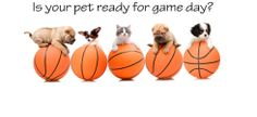 Is your pet ready for game day??  http://www.preciouspawprints.com/Basketball-Dog-Apparel-Collars.aspx
