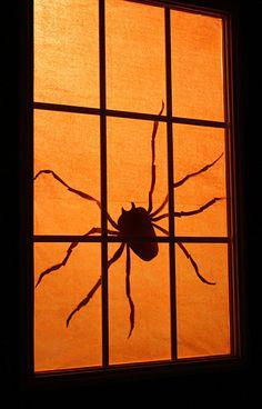 some orange tissue and a spider