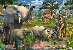 real african jungle animals - Google Search