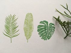 Hand drawn and hand carved with love by me. areca palm - x 2 x banana leaf - x x monstera leaf - x x The stamp may have some ink staining beacuse of test for quality. My stamps are unmounted. All stamps are 'made-to-order' and My Stamp, Botanical Prints, Hand Carved, Plant Leaves, Palm, How To Draw Hands, Carving, Ink, Flowers