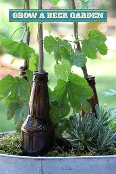 Hop To It: Grow A Beer Garden --> http://www.hgtvgardens.com/photos/garden-to-table-photos/grow-a-beer-garden?soc=pinterest