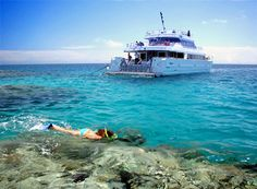 Great Barrier Reef.  Bart and I were there in 1990 with Uncle John, Cousin Terry, and Grandma Butler.  Bart scuba dived off a boat like this. Adventure Treks, Queensland Australia, Australia Travel, Snorkelling, Great Barrier Reef, Cairns, Day Tours, Travel Memories, Scuba Diving