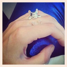 French Bulldog ring  someone PLEASE get this for me!!!!