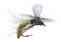 Fly of the Month Club-Spotlight Caddis Emerger