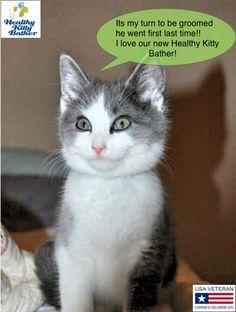 Healthy Kitty Flyer BUB!!!