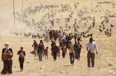 Displaced Yazidi walk towards the Syrian border, on the outskirts of Sinjar Mountain, on their way to safety in Iraqi Kurdistan on Aug 10.