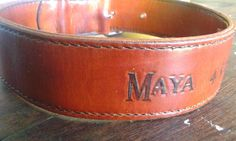 collar reforzado cuero raza pit dogo fila tosa mastin golden
