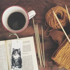 Hot drink, good book, knit project.
