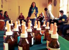 Seminario Plantas Sagradas de Poder y Esencias Chamánicas de México, con Gabriela Riveros. 30/03/2014 en Centro Holístico Ave Fénix