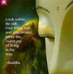 Mira dentro. Guarda silencio. Libérate del miedo y el apego, conoce la dulce alegría de vivir en el Camino. -Buda