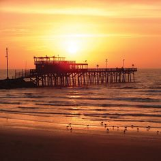 Welcome To Galveston Island!Welcome to Galveston Island! Galveston has sung her siren song for generations of visitors re a longtime visitor, you'll find Guatemala Beaches, Barbados Beaches, Barbados Travel, Galveston Texas, Galveston Island, Ecuador, Norway Beach, Voyager Loin, Texas Travel