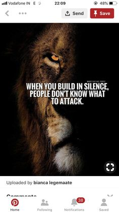 467 Best LION QUOTES images in 2019 | Thoughts, Inspirational qoutes