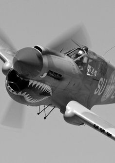 P40. This plane was stunning for the allied forces during the battle for air supremecy.
