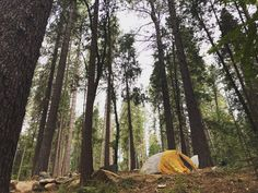 Celebrate the last days of summer and come camping at the Inn Town Campground