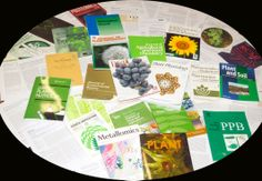 Experimental, Botany, Php, Chemistry, Special Library, Science Area, Zaragoza, Classroom, Journals