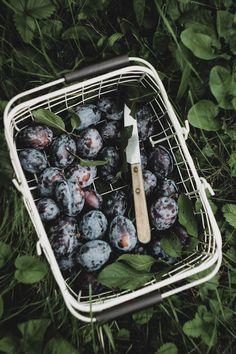 Plum in garden Acai Bowl, Plum, Blueberry, Fruit, Breakfast, Garden, Food, First Day Of Summer, Good Morning Love