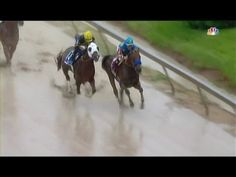 WATCH: American Pharaoh Blows Away the Competition in the Preakness Stakes | FatManWriting