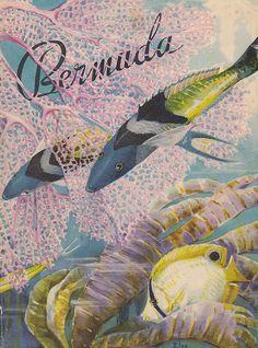 Bermuda poster art