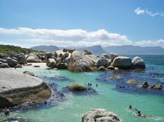 Boulders Beach in Cape Town, South Africa Oh The Places You'll Go, Places To Travel, Places To Visit, Boulder Beach, Volunteer Abroad, Local Attractions, Beach Fun, Volunteers, Cape Town