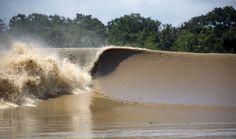 Marisa Fonseca Diniz O encontro das águas do mar com a do rio, caracterizado por ondas grandes e violentas na região amazônica é conhecida como pororoca. Alguns estudiosos acreditam que o fenômeno …