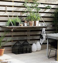 trädäck,uteplats,altan,dörr,växter