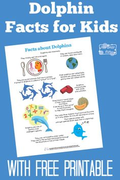 Engels: Fun Facts for Kids - Verschillende onderwerpen - Fun Dolphin Facts for Kids With Free Printables - Itsy Bitsy Fun Dolphin Facts For Kids, Dolphins For Kids, Dolphin Craft, Animal Facts For Kids, Fun Facts For Kids, Science For Kids, Activities For Kids, Kids Fun, All About Dolphins
