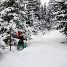Бонусом в фрірайді є ось такі прогулянки поміж засніжених ялинок)) #exploreukraine #openyourcarpathians #carpathians #mountains #wilderness #karpaty #igukraine #vsco #vscoua #snow #snowboarding #dragobrat