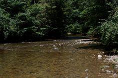 River, still summer