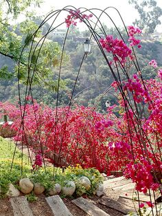 Rebar (or another heavy-duty metal rod) creates an uncommon archway trellis entrance and gives climbing plants an unusual lift up. Garden Structures, Garden Paths, Garden Art, Garden Landscaping, Garden Design, Garden Stand, Garden Trellis, Arch Trellis, Colorful Garden