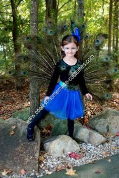 Homemade Peacock Girl& Halloween Costume Idea: My daughter was determined to be a peacock this year for Halloween. So after searching online for a Homemade Peacock Girl& Halloween Costume Idea and Best Girl Halloween Costumes, Halloween 2014, Halloween Kids, Halloween Crafts, Halloween Party, Girls Peacock Costume, Peacock Halloween Costume, Homemade Costumes, Diy Costumes