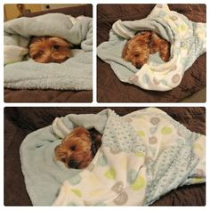 Simple DIY Snuggle Sack... I need to make one of these for my girl since winters are so cold here.