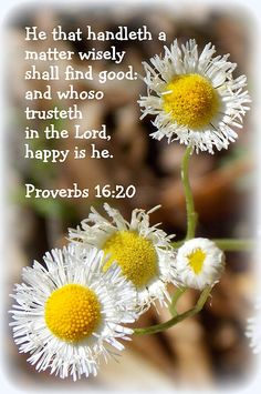 He who heeds the word wisely will find good, And whoever trusts in the Lord, happy is he. [Proverbs 16:20]
