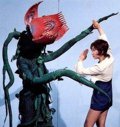 Let's Get Whisked Away by Kitschy Kaiju Japanese Monsters Original Godzilla, The Americans Tv Show, Space Dragon, Japanese Monster, Retro Robot, Live Action Film, Japanese Film, Scene Photo, Weird World
