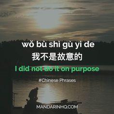 wo bu shi gu yi de - 我不是故意的 - I didn't do it on purpose