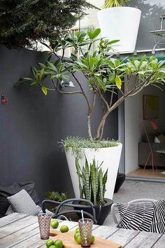 amenagement-terrasse-exterieur-mobiliers-d-extérieur-moderne-pour-le-jardin-moderne. Back Gardens, Small Gardens, Outdoor Gardens, City Gardens, Outdoor Pots, Terrace Garden, Garden Pots, Garden Troughs, Courtyard Gardens