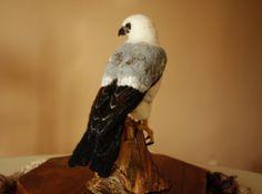 Needle felting bird of prey Mississippi por MinzooNeedleFelting