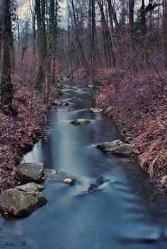 Quiet stream  ♡