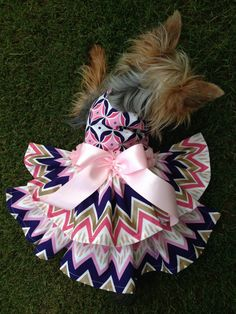 Custom Made Dog Pet Clothing Dress  Gorgeous by Rufflesforcharli, $27.00