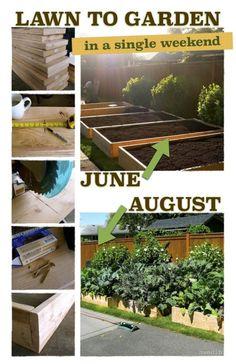 Umgestaltung: vom Rasen zum Garten in 6 einfachen Schritten – LAWN TO GARDEN IN A SINGLE WEEKEND