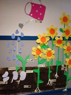 Creative Bulletin Board Ideas for Kids Plant Growth Board. A cool idea for spring science bulletin board in April. A cool idea for spring science bulletin board in April. Creative Bulletin Boards, Science Bulletin Boards, Garden Bulletin Boards, April Bulletin Board Ideas, Preschool Bulletin, Flower Bulletin Boards, Spring Bulletin Boards, Kindergarten Science, Science Classroom