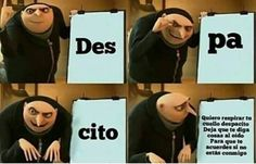 When u speak Spanish and are the only one singing correctly XD Lol Memes, Crazy Funny Memes, Stupid Funny Memes, Funny Laugh, Wtf Funny, Funny Relatable Memes, Funny Posts, Hilarious, Despicable Me Memes