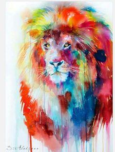 Water colour. lion