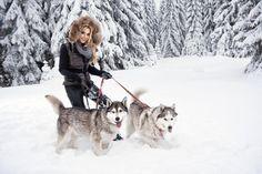 Девушка с собаками хаски в лесу