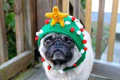 Pug and Christmas Hat Crochet Christmas Tree Hat, Crochet Christmas, Merry Christmas, Christmas Crack, Christmas Puppy, Christmas Animals, Christmas Time, And So It Begins, Pug Love