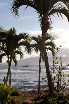 Four Seasons Wailea Maui Wedding Photography » Aaron Dieppa