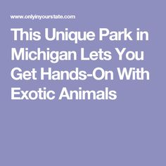 This Unique Park in Michigan Lets You Get Hands-On With Exotic Animals