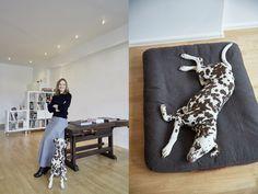 Jutta & Lu (on Cloud 7 Dog Bed Dream)