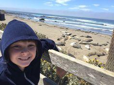 It's bucket list time for adventurous California families!