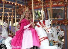 Aurora from Sleeping Beauty Disney World Characters, Face Characters, Disney Movies, Disney Stuff, Disneyland Trip, Disney Vacations, Vacation Places, Sleeping Beauty 1959, Disney Sleeping Beauty